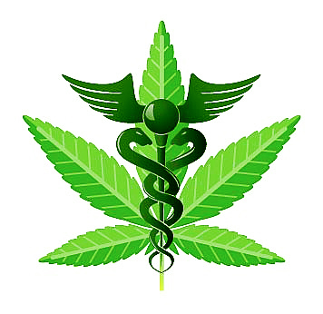 cannabis cadusius
